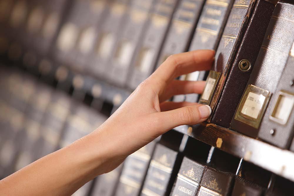 archivo vivo y archivo histórico